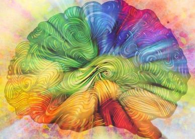 The Guts You Need To Heal Your Brain Masterclass
