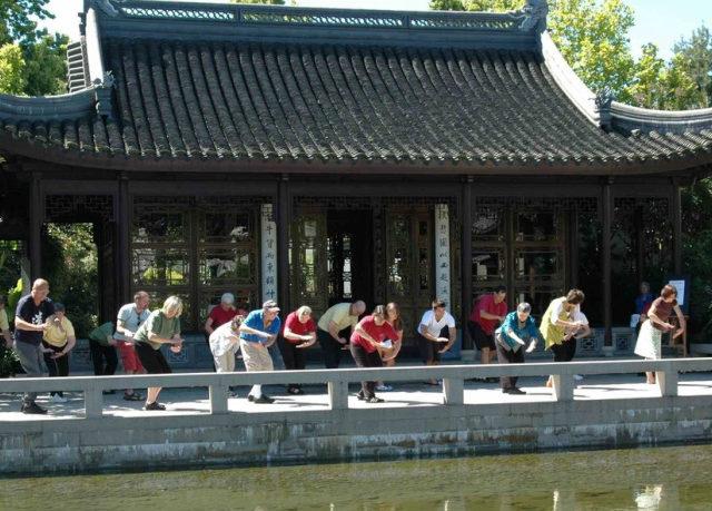 Wild Goose Qigong Practice